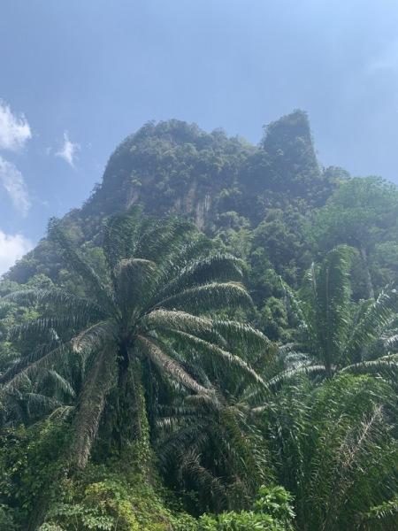 La route vers Ao-Nang