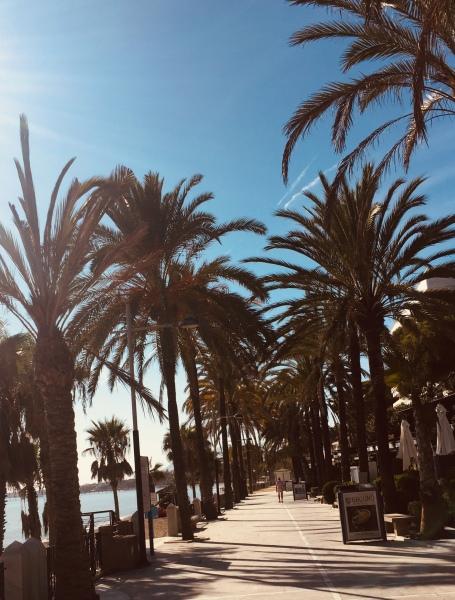 bord de mer de Marbella