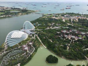 vu-jardinbotanique-singapoure