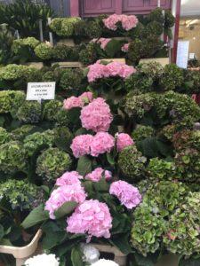 flower-market-londres-2