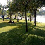 park-chatuchak