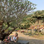 jardin-Mae Fa Luang(1)
