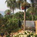 jardin-Mae Fa Luang