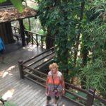 jardin-Mae Fa Luang(6)