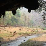 lod-cave (4)