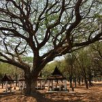 parc-sukhothai (9)