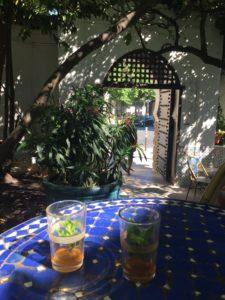 balade à paris-jardindesplantes